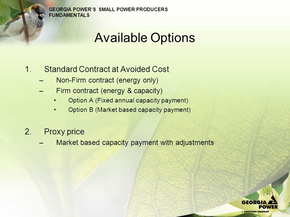Available Options Standard Contract at Avoided Cost Proxy price