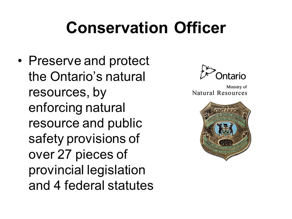 conservation officer how to become