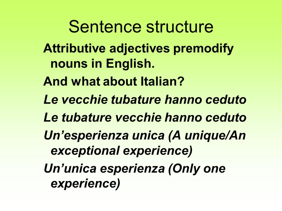 Sentence structure Attributive adjectives premodify nouns in English.