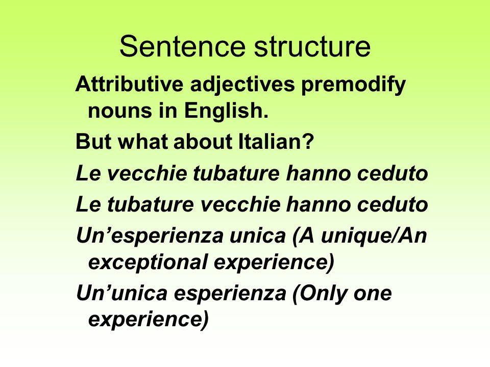 Sentence structure Attributive adjectives premodify nouns in English.