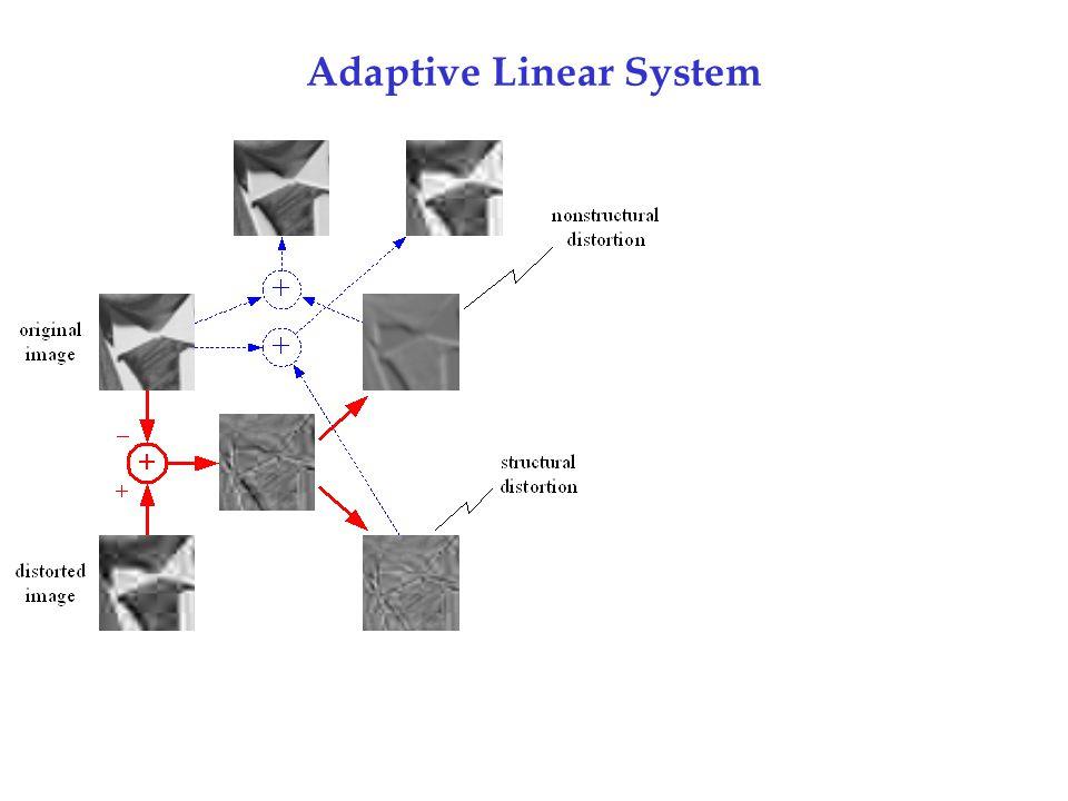 Adaptive Linear System