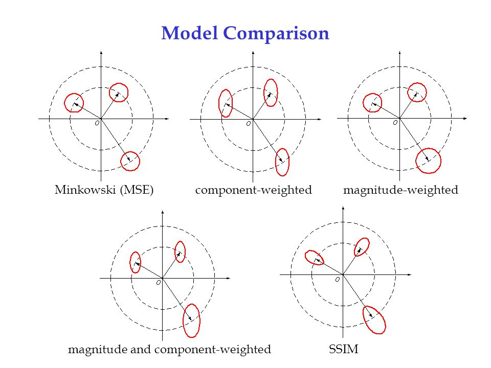 magnitude and component-weighted