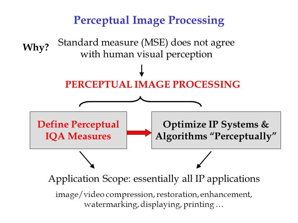 Perceptual Image Processing