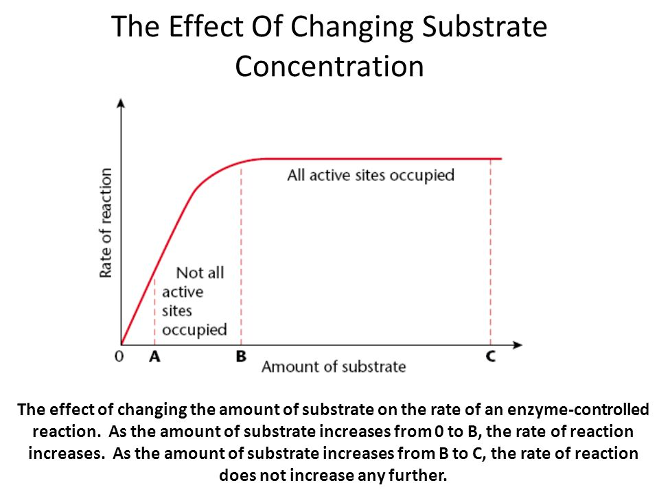 the effect of ph on the rate of an enzyme controlled reaction Enzyme action—effect of enzyme concentration, temperature and ph on catalase activity  enzymes the rate of a chemical reaction by decreasing the activation .