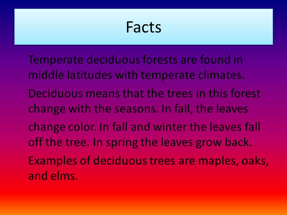 interesting facts about coniferous forest biomes The coniferous forests have cold, long winters with snow, and warm hot, humid summers taiga is the russian term for coniferous forest the three most dominating plants are fir, pine, and spruce trees.