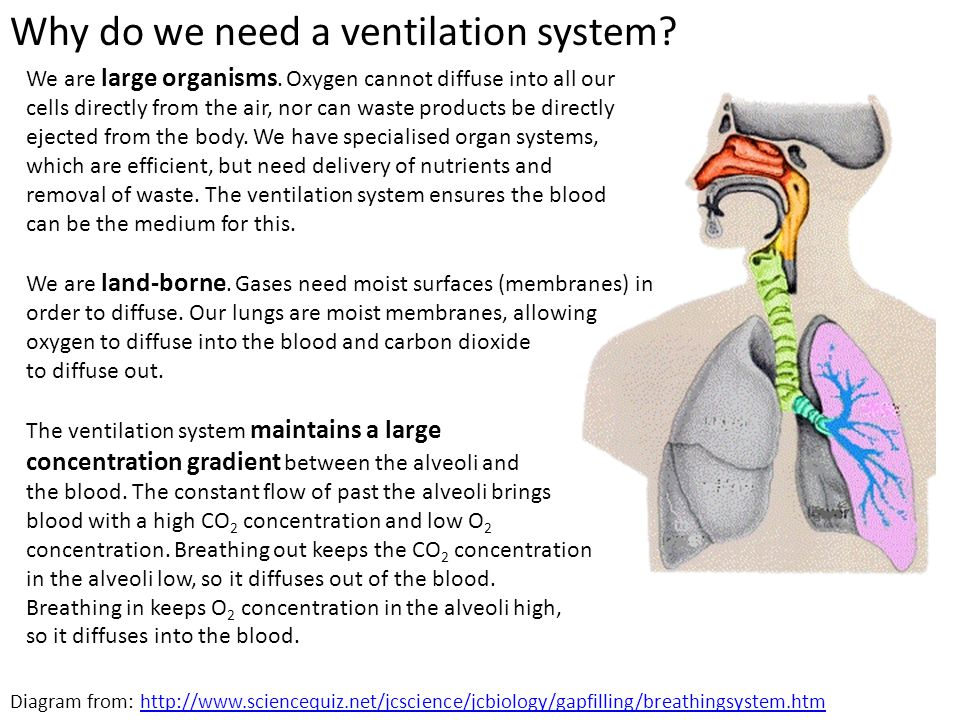 Why do we need a ventilation system