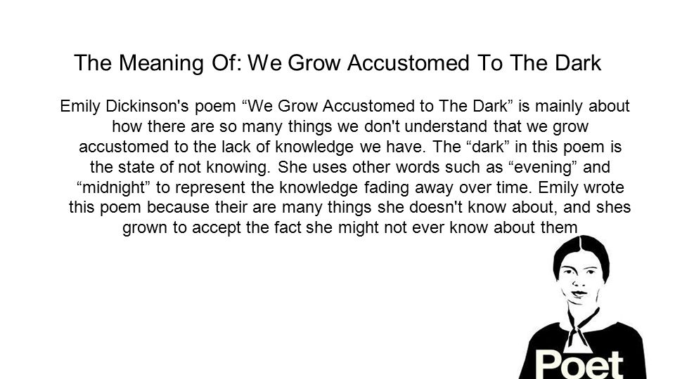 The Meaning Of: We Grow Accustomed To The Dark