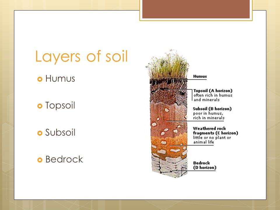 Soil more than just a bunch of dirt ppt download for 6 layers of soil