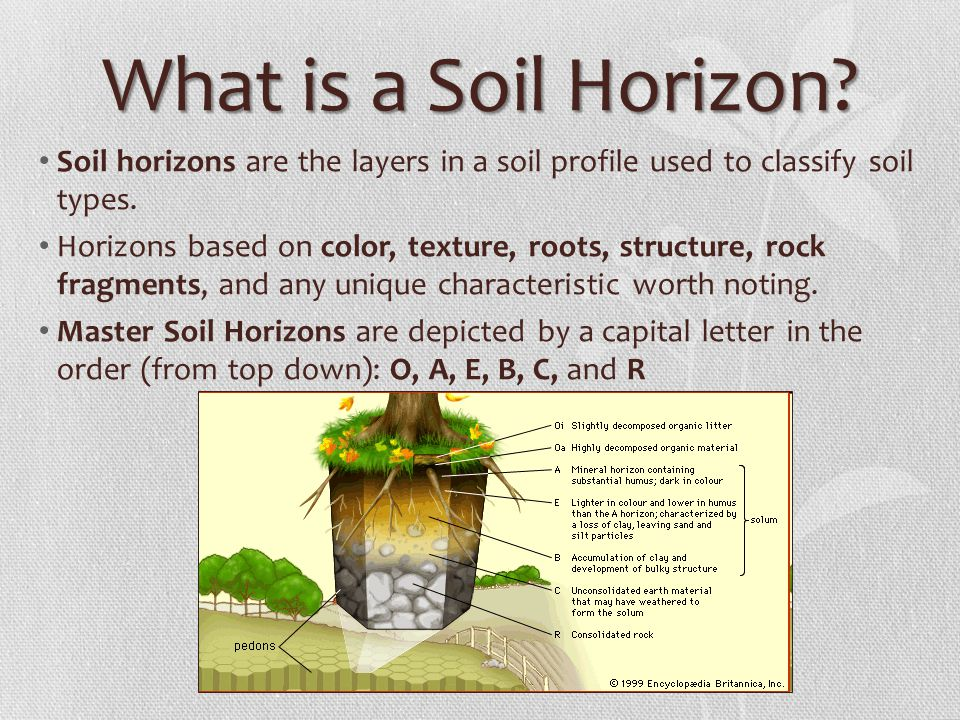 The soil profile ppt video online download for Soil 5 letters