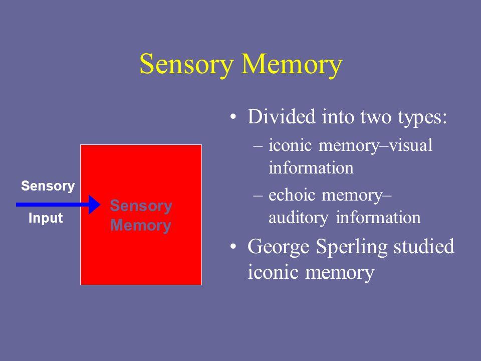 iconic sensory