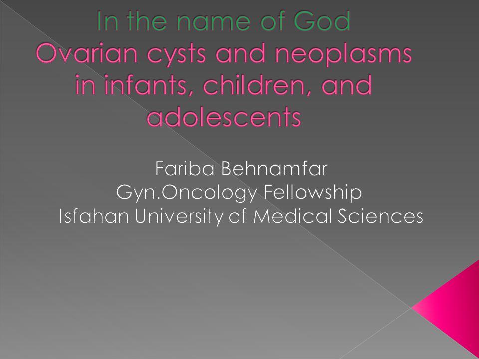 Fariba Behnamfar Gyn Oncology Fellowship
