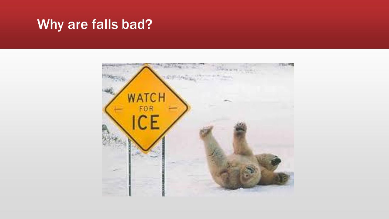 Why are falls bad Funzypics.com
