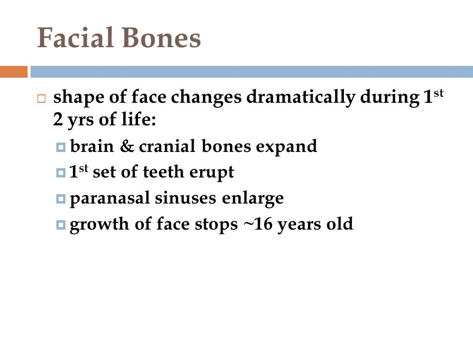 changes to bone density throughout the lifespan Half of all postmenopausal women will have an osteoporosis-related fracture during  life caused by osteoporosis-related fractures  bone mineral density changes .