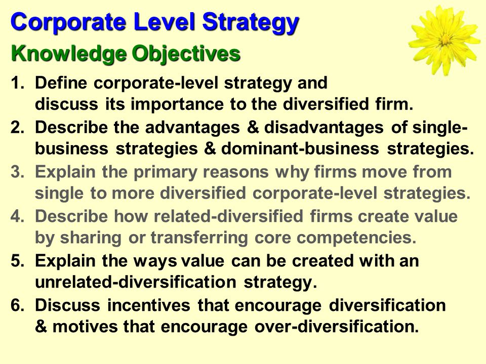 Advantages and disadvantages of business diversification strategy