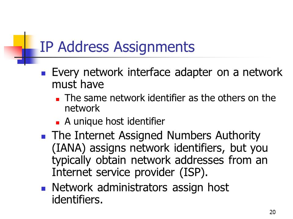 IP Address Assignments