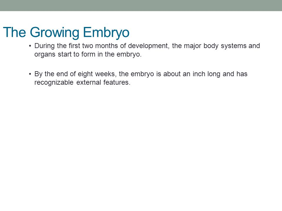 Pregnancy, Birth, Childhood - ppt video online download