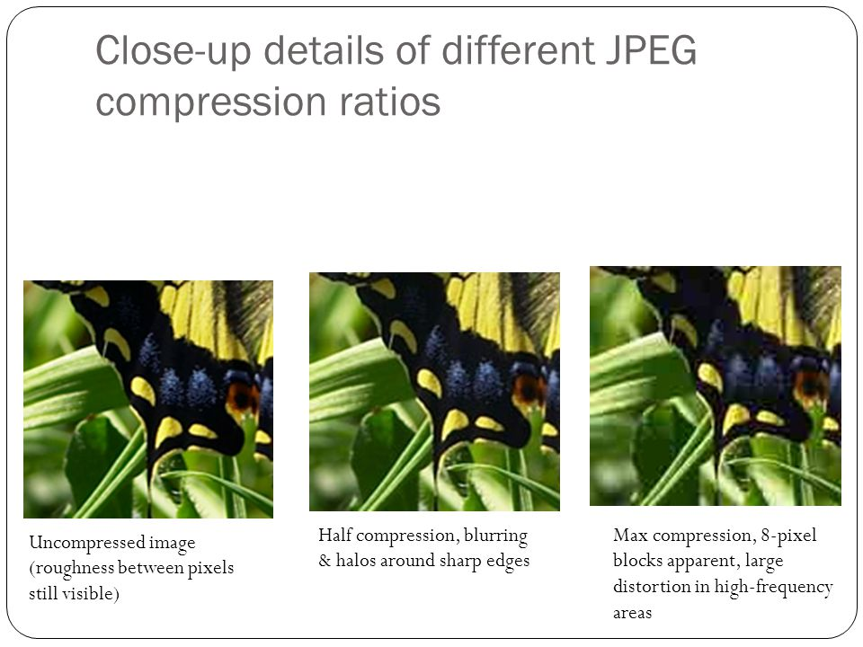 Close-up details of different JPEG compression ratios