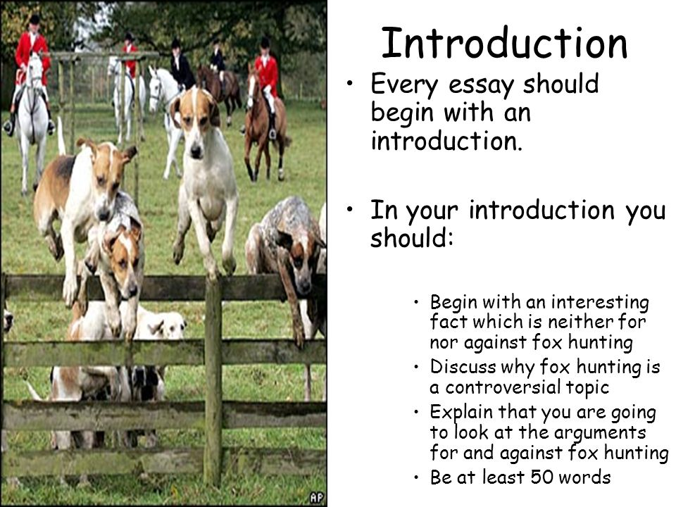 fox hunting what should happen essay 6 strange (sometimes illegal) realities of fox fox hunting is one of the most cops after watching our dogs get a fox if we'd meant for it to happen.