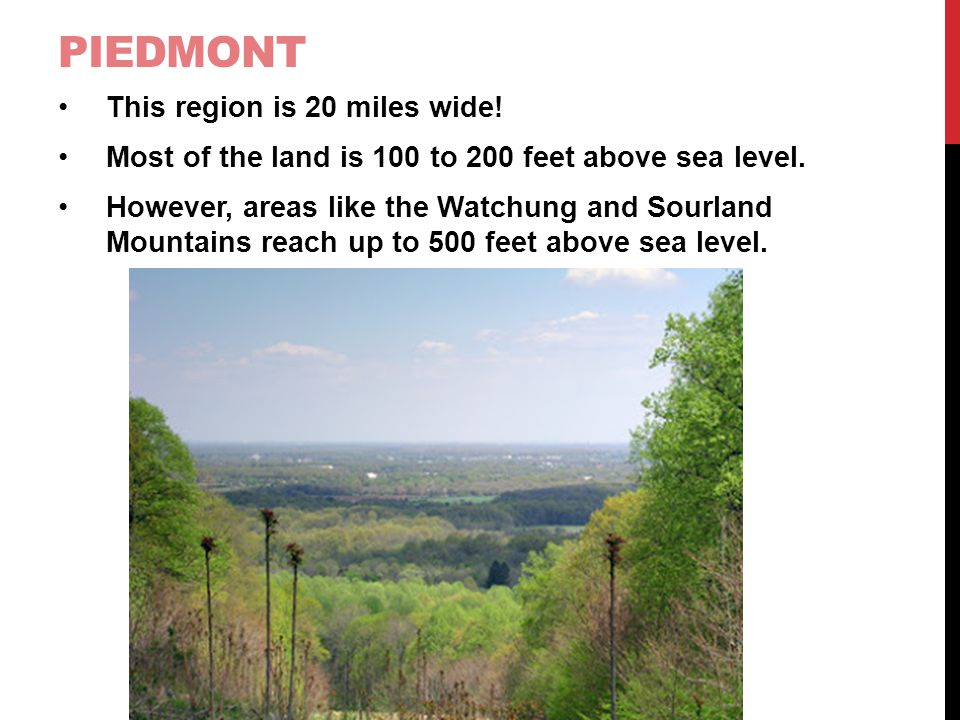 Piedmont This region is 20 miles wide!