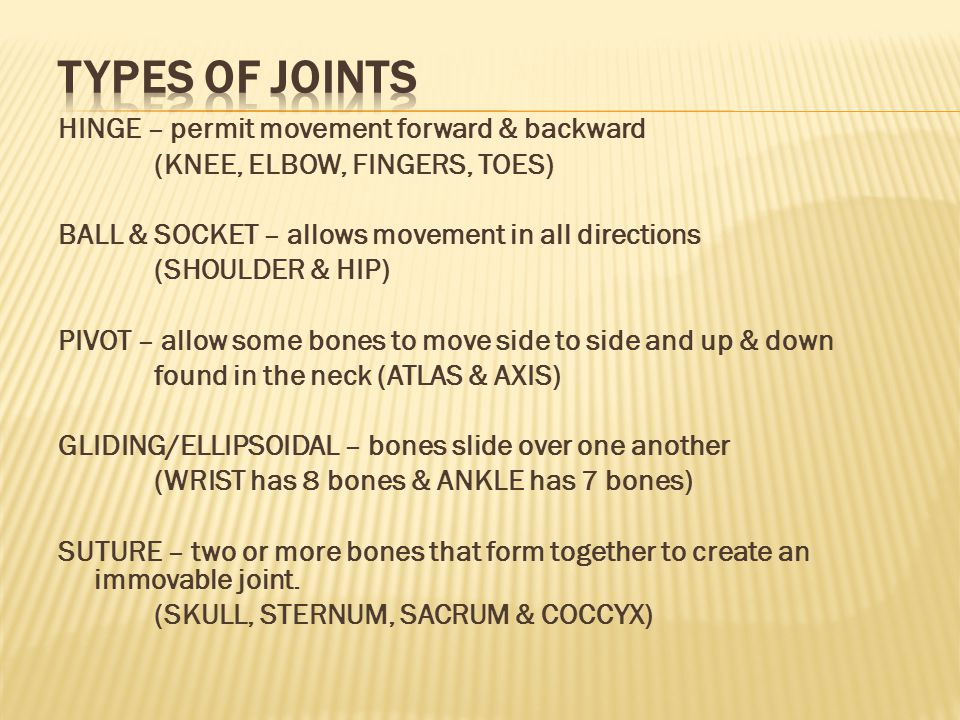 TYPES OF JOINTS HINGE – permit movement forward & backward