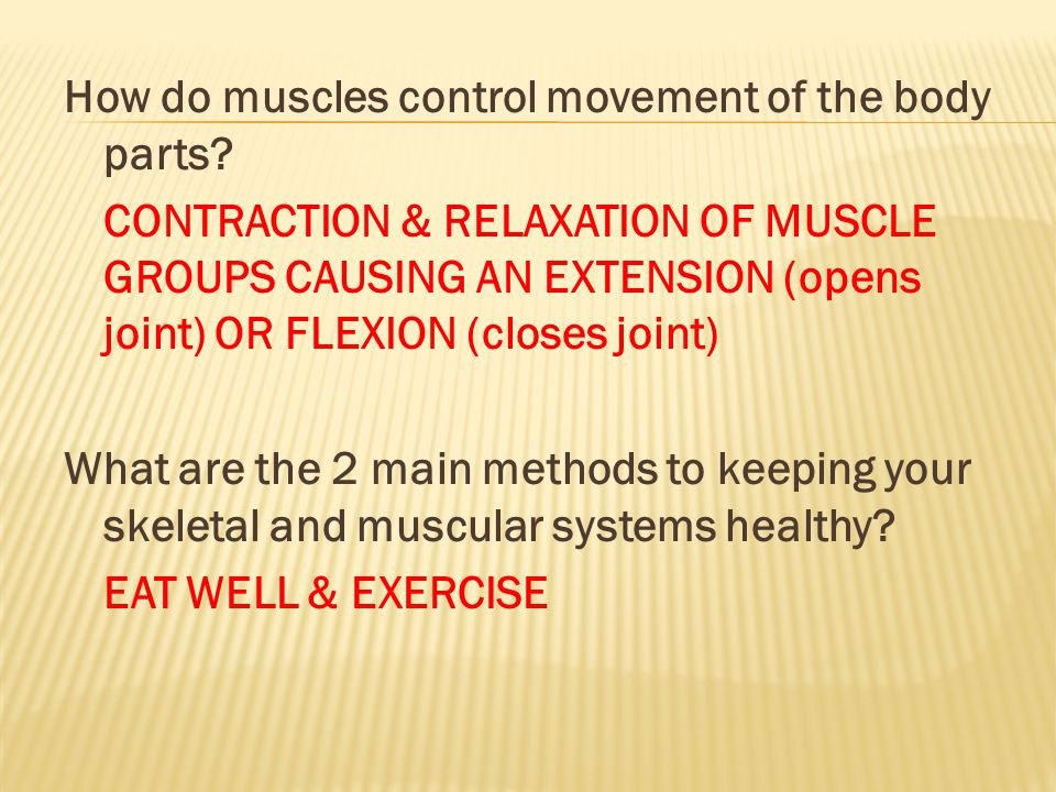 How do muscles control movement of the body parts
