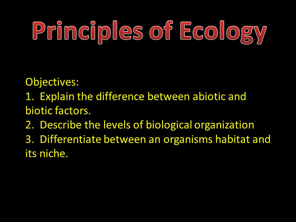 what is the difference between natural selection and ecological succession Examples of succession succession occurs in all sorts of vegetation indeed in some cases, succession coverts one vegetation type to another in some cases, succession takes place on new substrate that has few available nutrients or seeds and other sources of plants for example, ponds may undergo succession through bogs to closed.