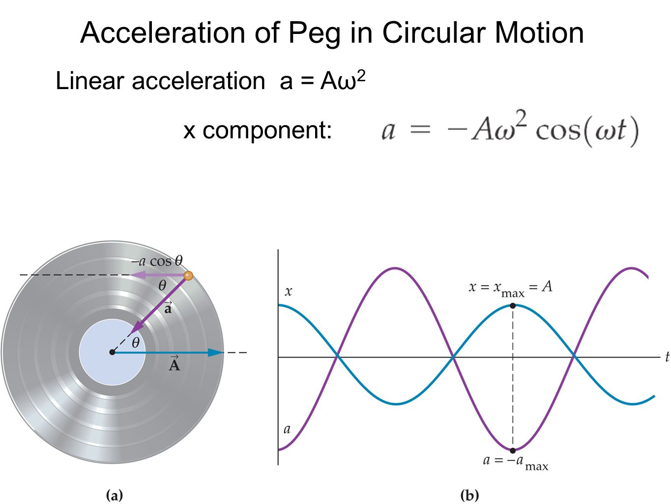 Acceleration of Peg in Circular Motion