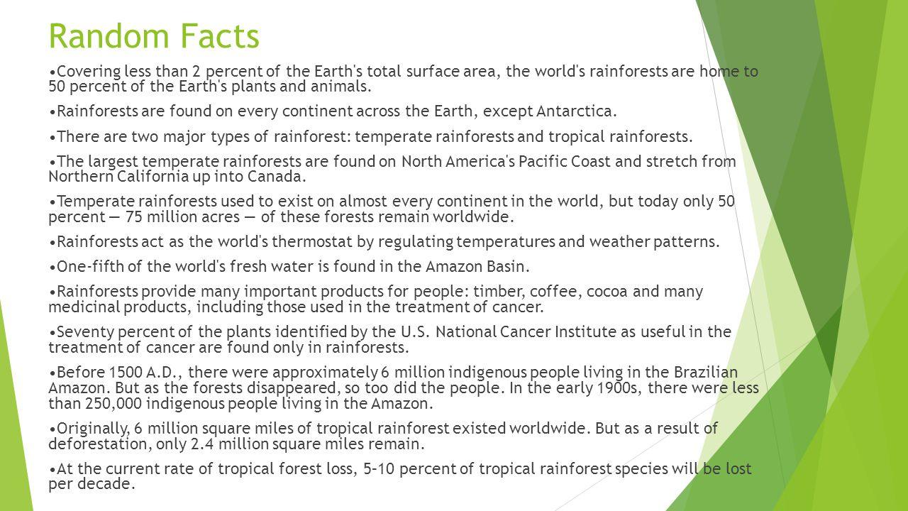 an analysis of the two major types of rain forests Tropical rainforests merge into other types of forest depending on the there are two major types of wet tropical review latin american forest types.