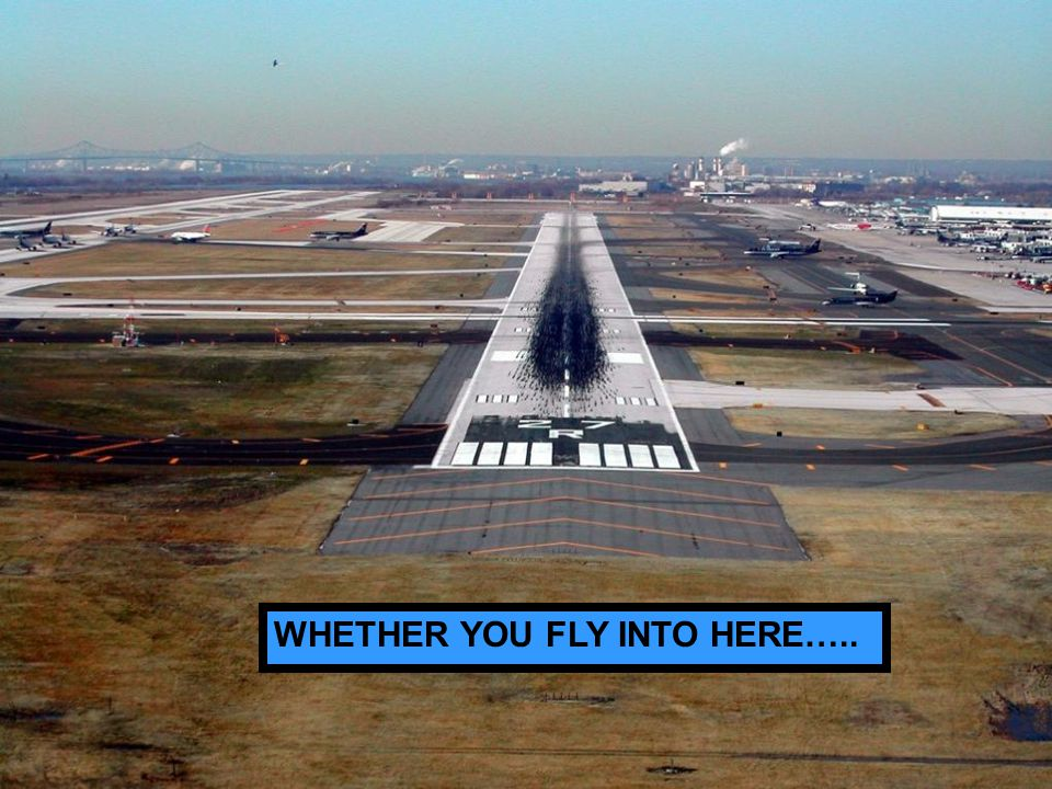 WHETHER YOU FLY INTO HERE…..