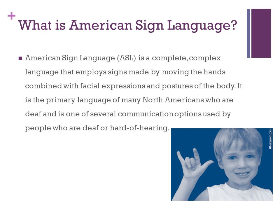 introduction to american sign language Sign up categories  this course is designed to give students a language foundation in asl the course will include:  introduction 3 lectures .