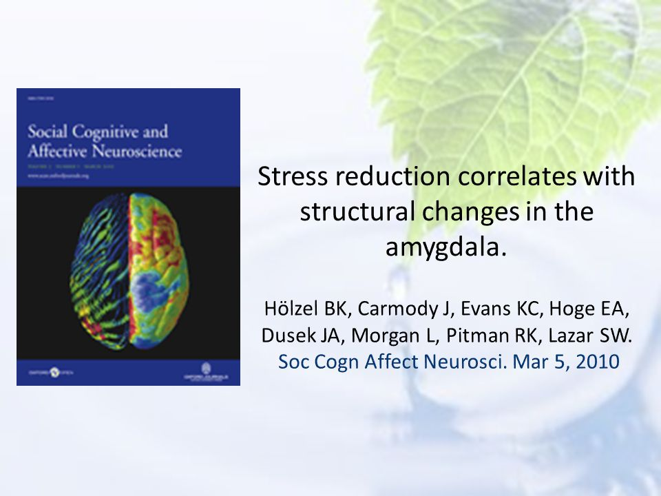Stress reduction correlates with structural changes in the amygdala