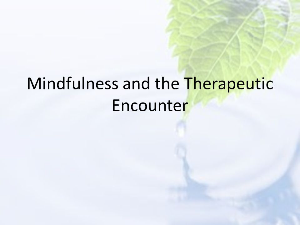 Mindfulness and the Therapeutic Encounter