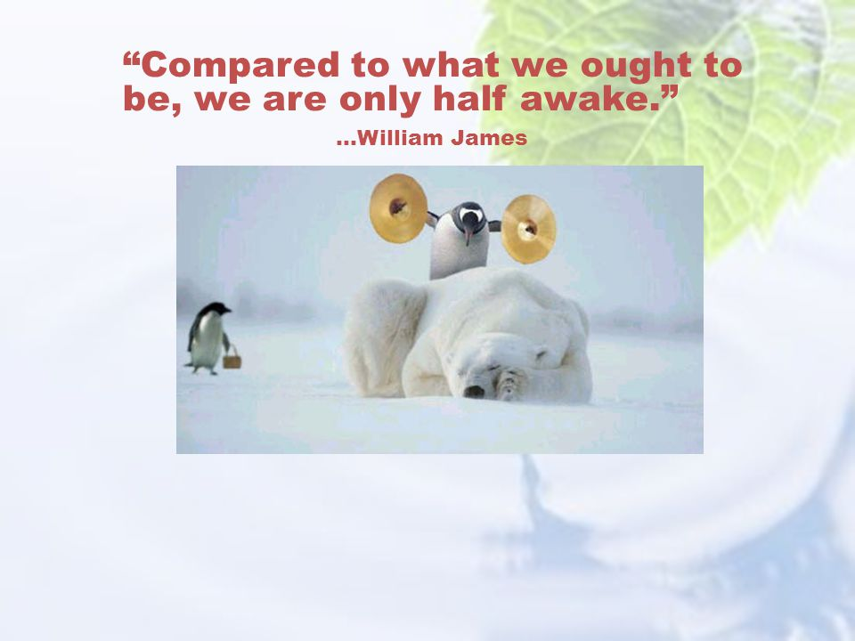 Compared to what we ought to be, we are only half awake.
