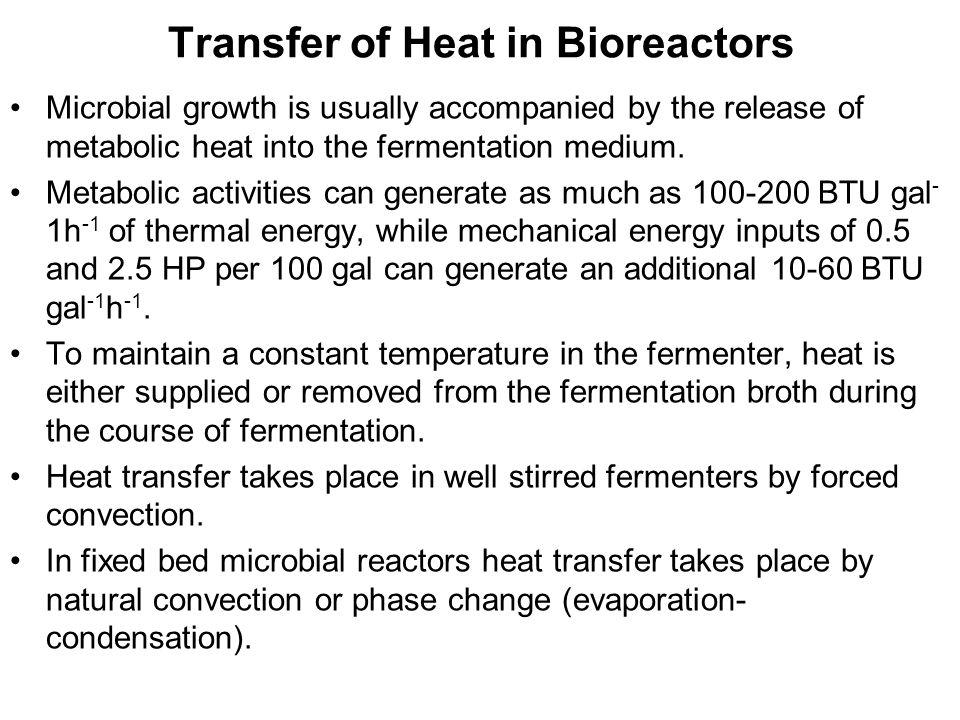 Transfer of Heat in Bioreactors
