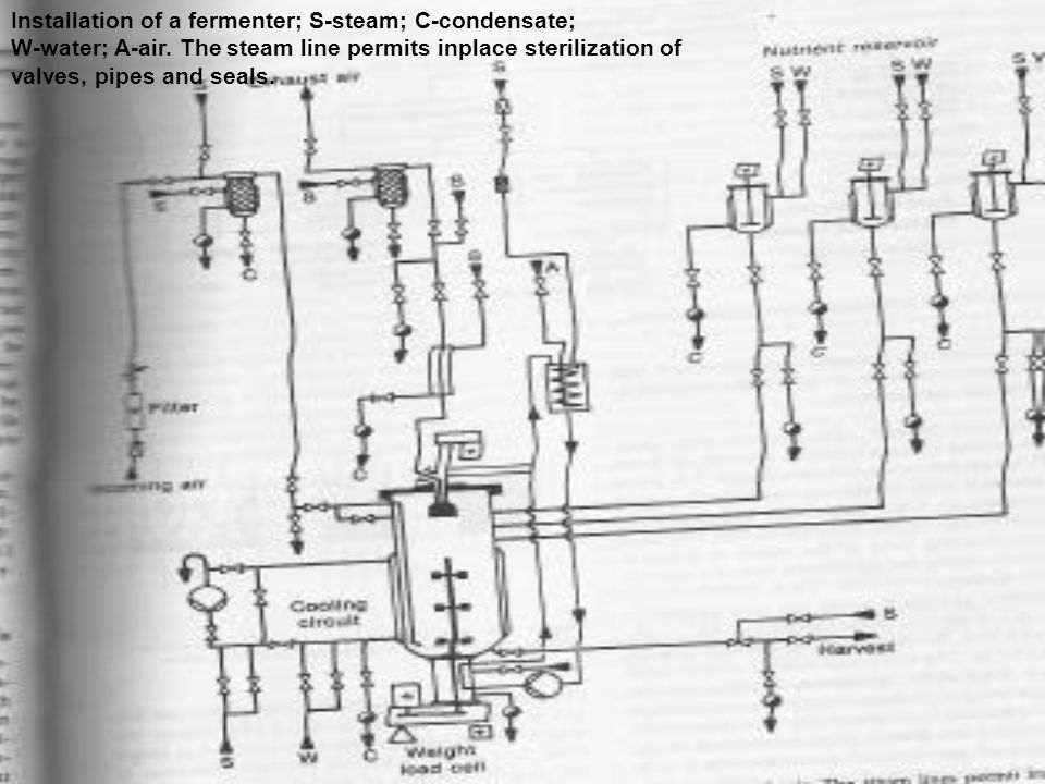 Installation of a fermenter; S-steam; C-condensate;