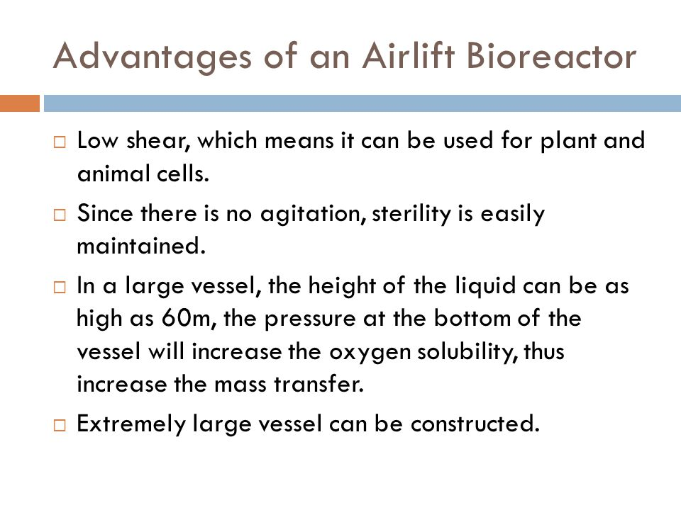Advantages of an Airlift Bioreactor