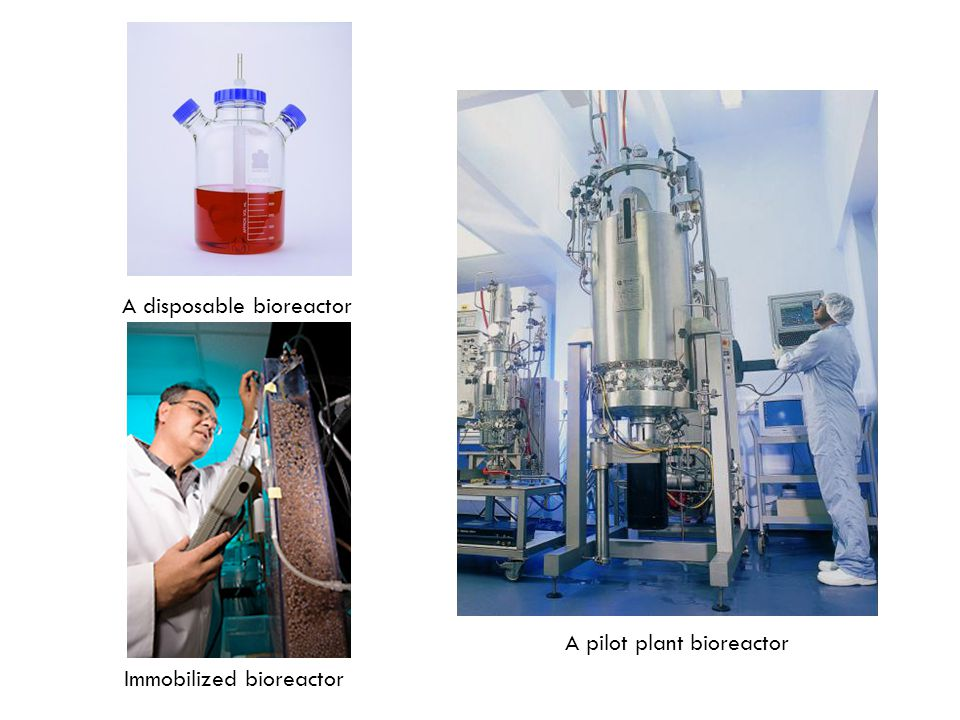 A disposable bioreactor
