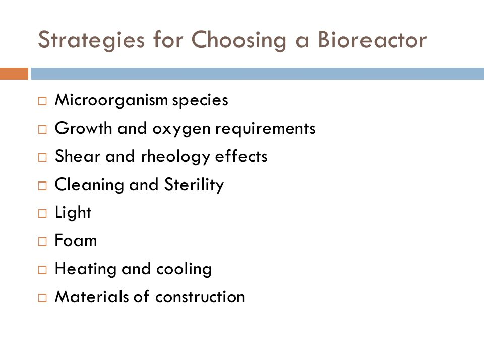 Strategies for Choosing a Bioreactor