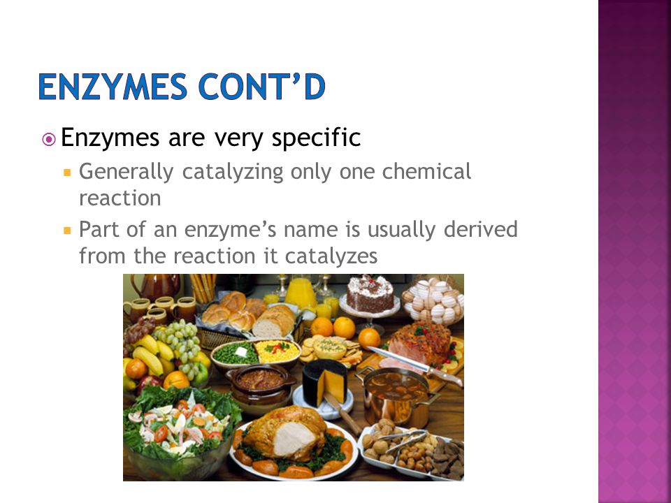 Enzymes Cont'd Enzymes are very specific