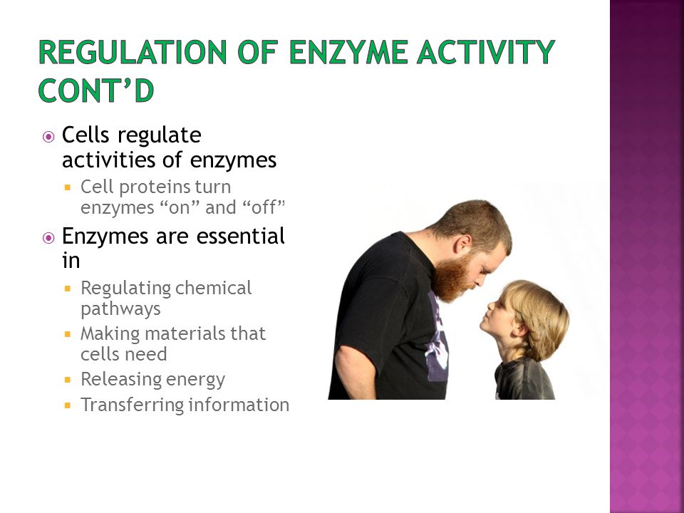Regulation of enzyme activity Cont'd