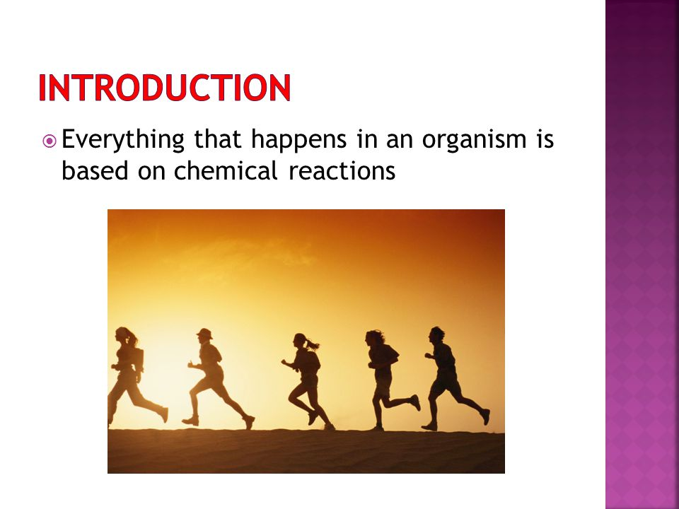 Introduction Everything that happens in an organism is based on chemical reactions