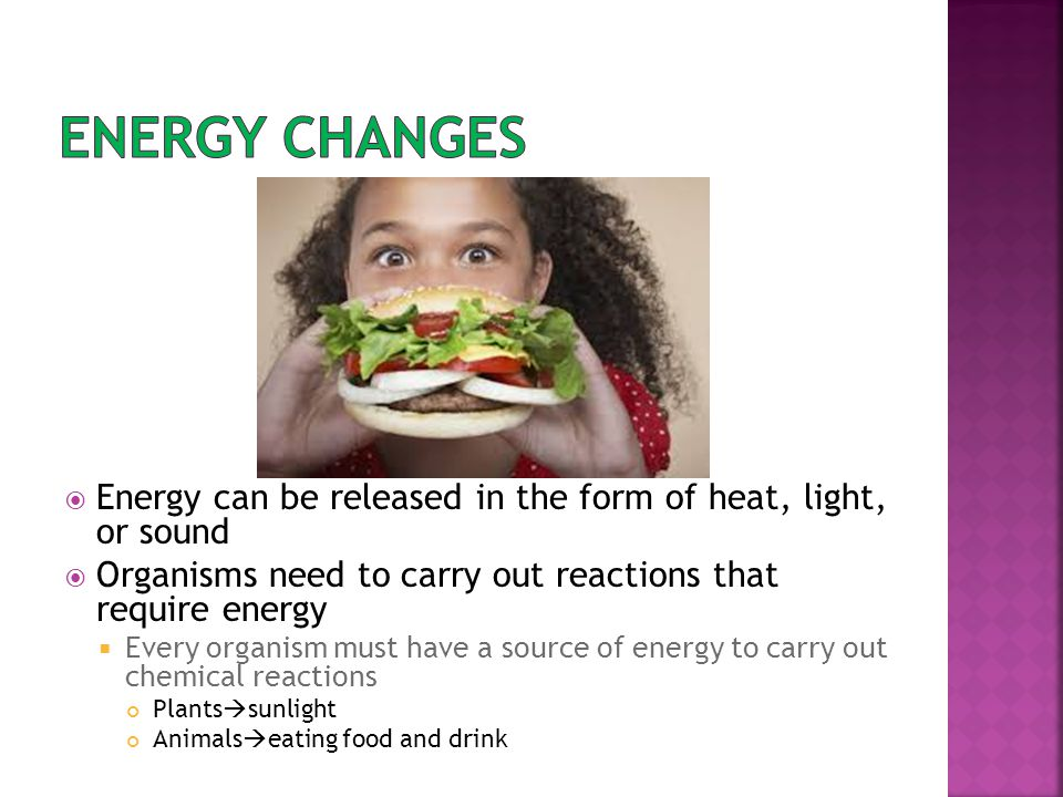 Energy changes Energy can be released in the form of heat, light, or sound. Organisms need to carry out reactions that require energy.