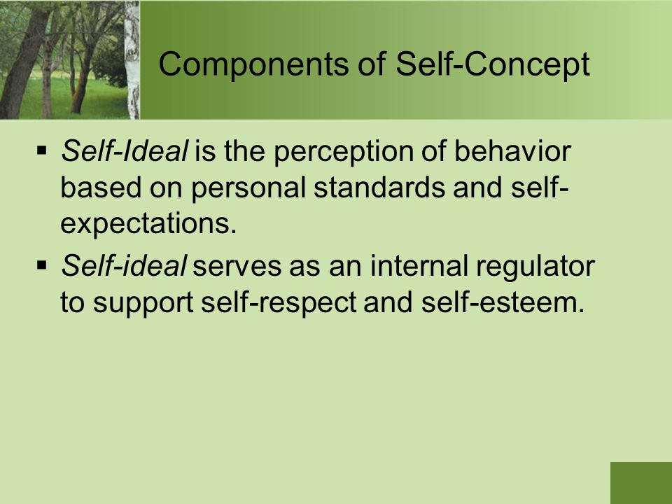 Components of Self-Concept