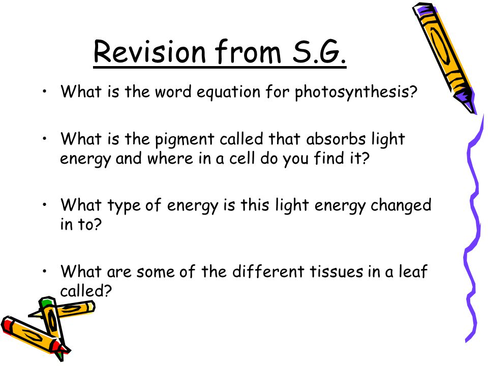 What is the photosynthesis equation in words?