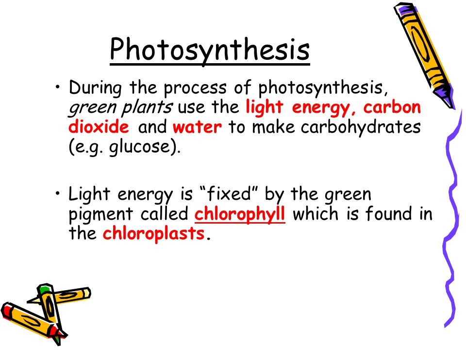 Photosynthesis. - ppt ...