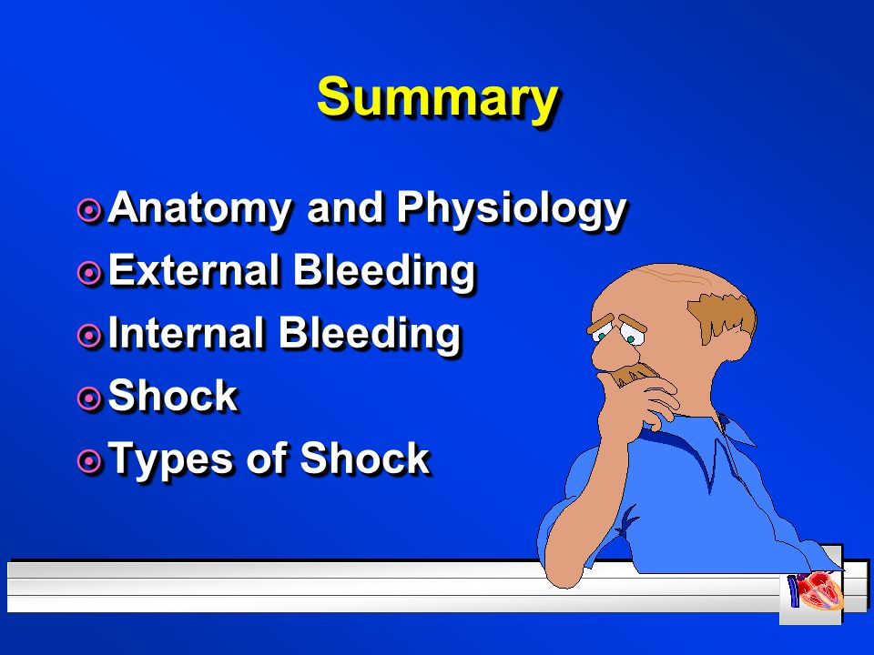 Summary Anatomy and Physiology External Bleeding Internal Bleeding