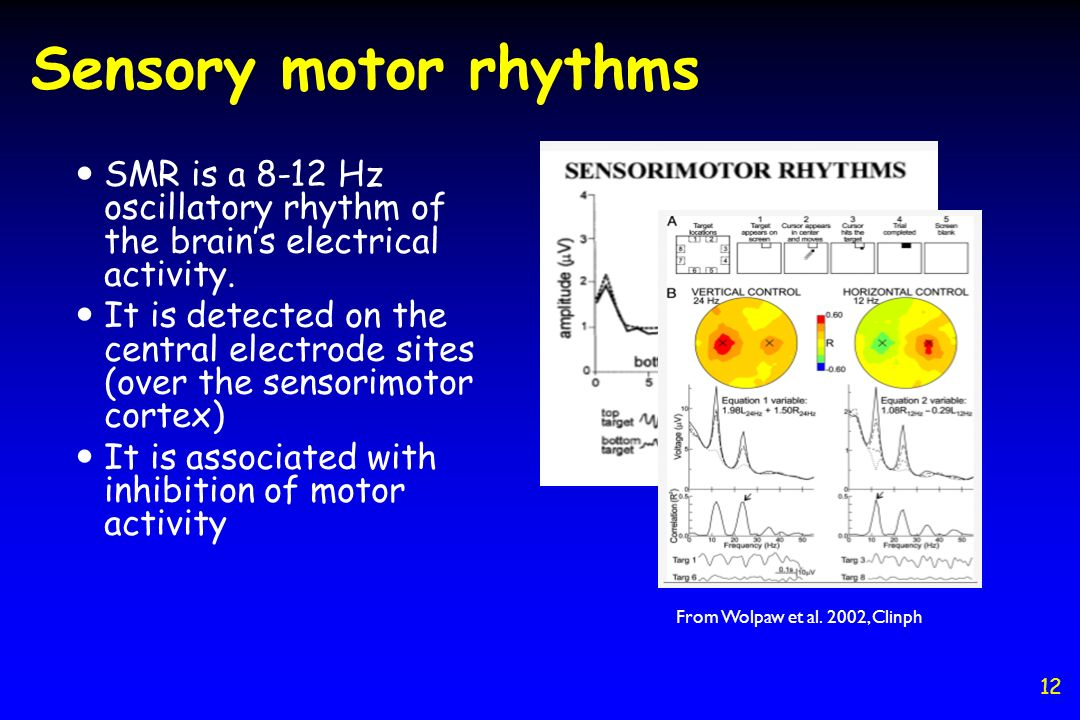 Sensory motor rhythms SMR is a 8-12 Hz oscillatory rhythm of the brain's electrical activity.