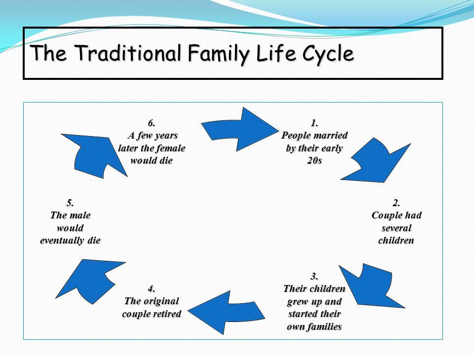 family system theory essay