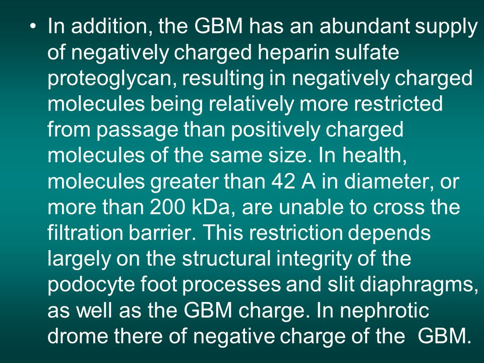 In addition, the GBM has an abundant supply of negatively charged heparin sulfate proteoglycan, resulting in negatively charged molecules being relatively more restricted from passage than positively charged molecules of the same size.