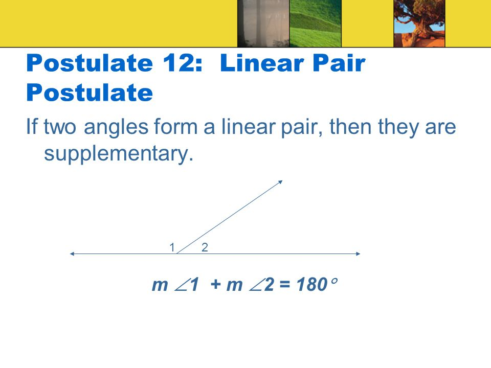 Postulate 12: Linear Pair Postulate